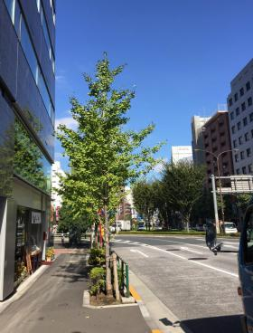 新宿花園MJビルその他写真
