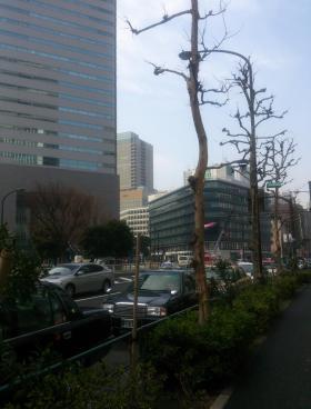 東京倶楽部ビルディングその他写真