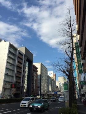 Mayapada Shiodome Plaza(旧汐留プラザ)その他写真
