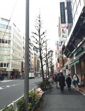 FORECAST西新宿その他写真