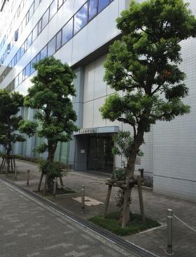 鈴与浜松町ビルのエントランス