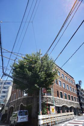 MFビル(代々木1丁目)の外観写真