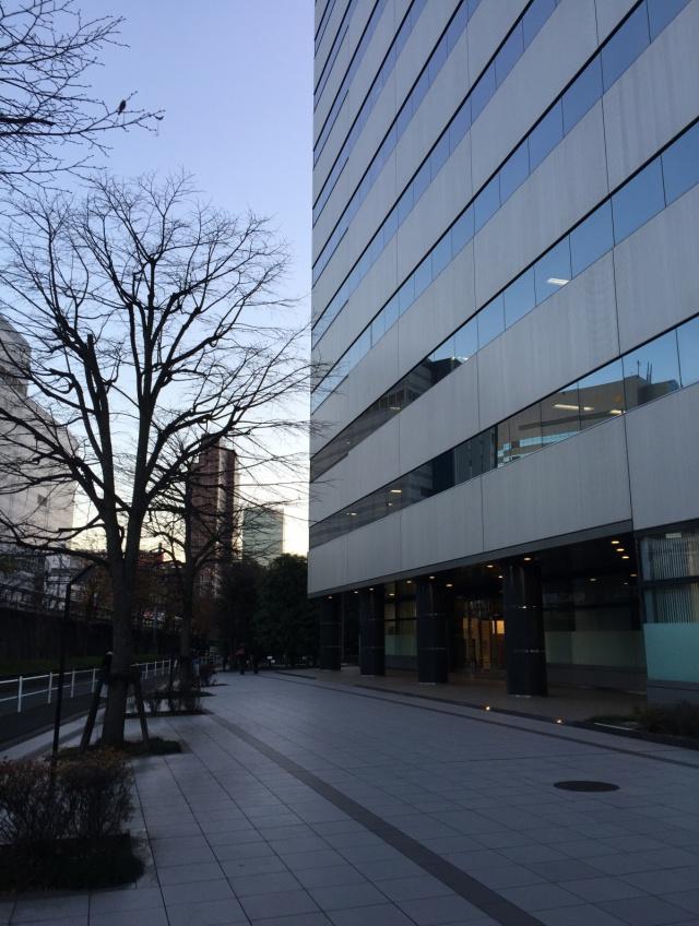 西新宿プライムスクエア(西新宿木村屋)ビル 6F 11.94坪(39.47m<sup>2</sup>)その他写真