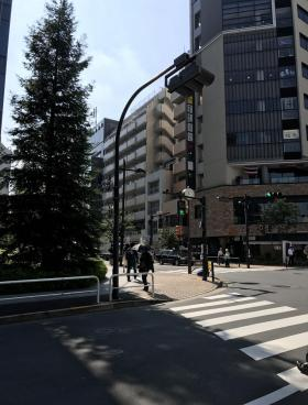 (仮称)千代田区五番町計画ビルの内装