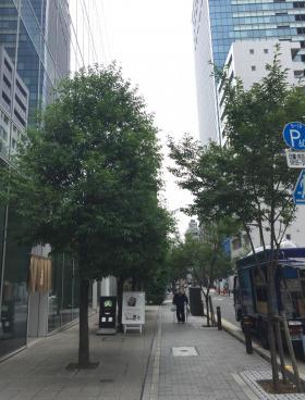 日本橋本町YSビルの内装